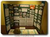 Examples Of Science Fair Projects