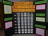 Eighth Grade Science Fair Projects Pictures