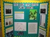 Photos of Plant Science Projects