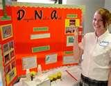 Photos of Six Grade Science Fair Projects