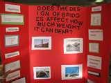 My Science Fair Project Pictures