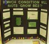 Pictures of 1 Place Science Fair Projects