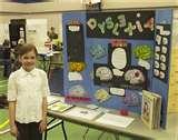 Junior High Science Projects Pictures