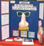Pictures of Physical Science Fair Project Ideas