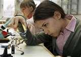 Images of Science Project Ideas