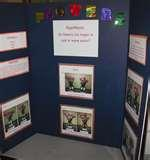 Science Projects For 3rd Graders Pictures