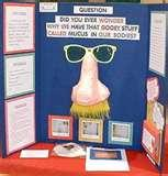 Interesting Science Fair Projects Pictures