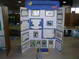 Science Fair Project Topics Pictures