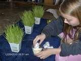 Science Expo Projects Pictures