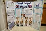 Pictures of Finished Science Fair Projects