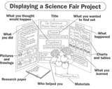 Pictures of What Science Project Should I Do