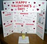 Easy Science Projects For 7th Graders Pictures