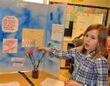 4 Grade Science Project Images