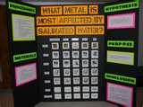 Pictures of Science Fair Projects Kids