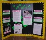 Photos of Cool Ideas For Science Fair Projects
