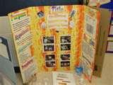 Photos of Solar System Science Fair Project